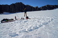 8.5 m long firn core from the upper glacier